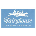 12_fairyhouse_resize